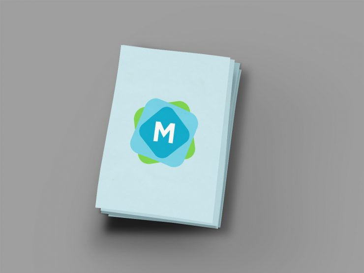 Beautiful Flyer Mockup Template Mockup Templates